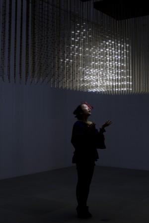 SWARM Light 2010 © James Harris