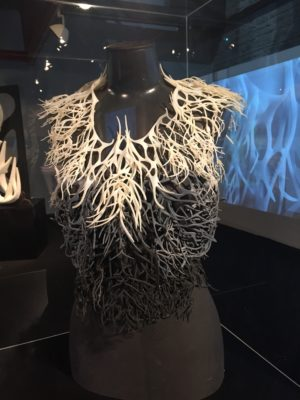 Julia Koerner's Kelp Jacket, Body Building exhibition, TAB 2015, © TAB 2015